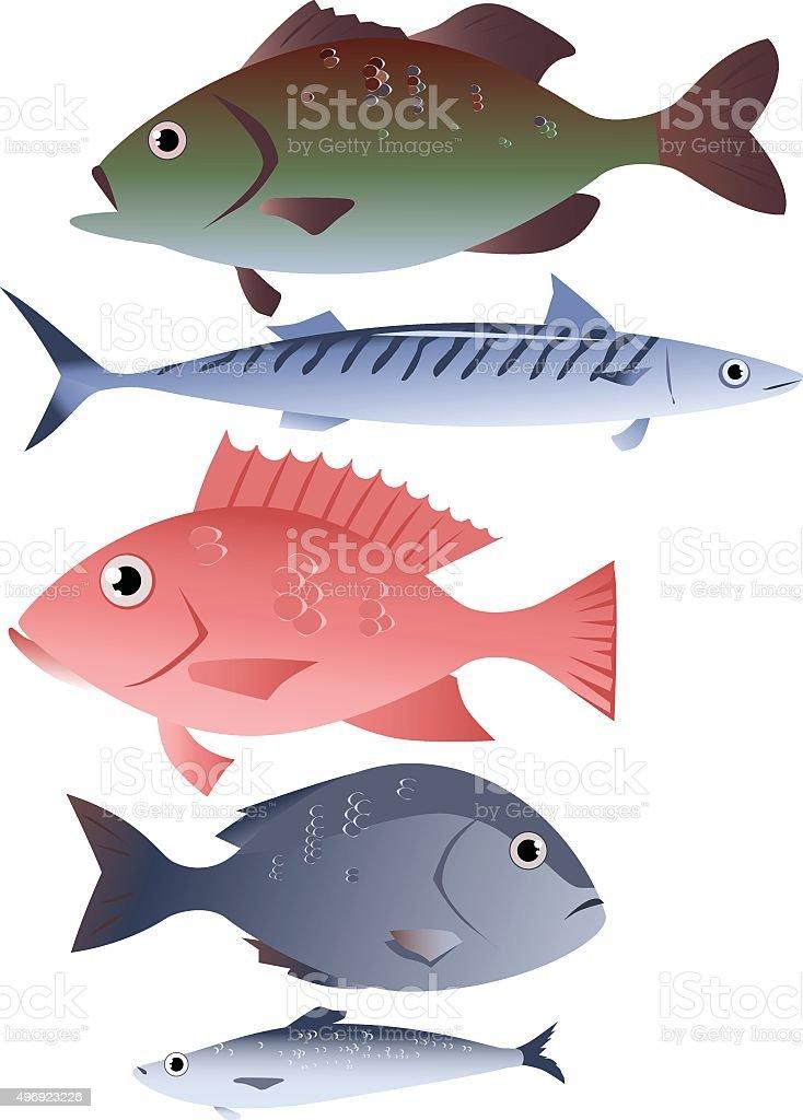 Assorted fish vector art illustration