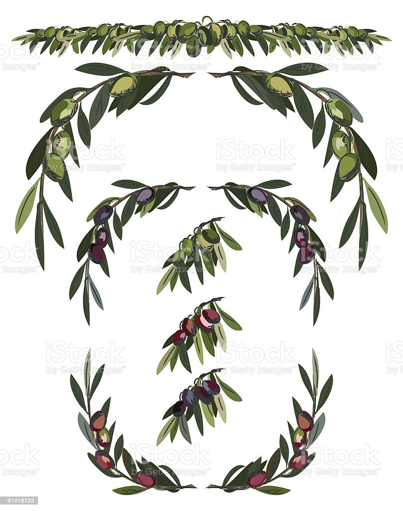 Assorted Olive Branches in different colors green, red and black royalty-free stock vector art