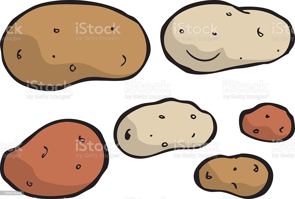 Assortment of different color and sized potatoes royalty-free stock vector art