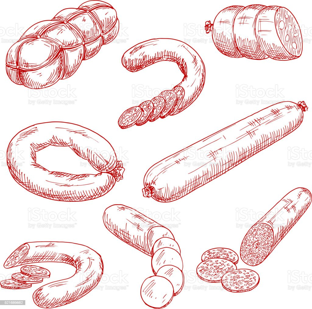 Assortment of fresh meat sausages red sketch icons vector art illustration