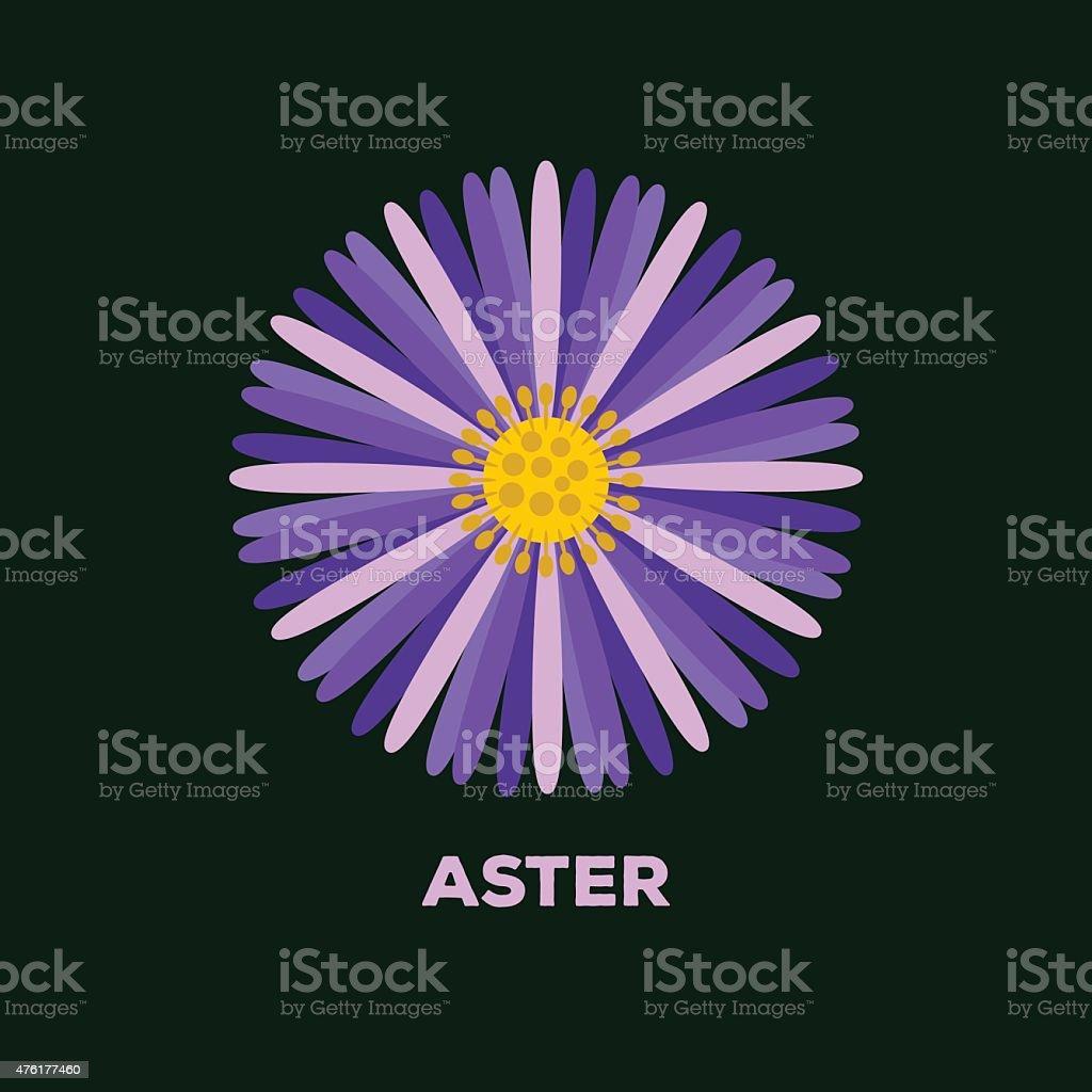 Aster flower logo vector vector art illustration