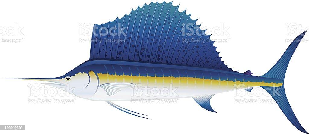 Atlantic Sailfish. vector art illustration
