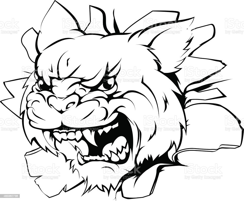 Attacking wildcat head vector art illustration