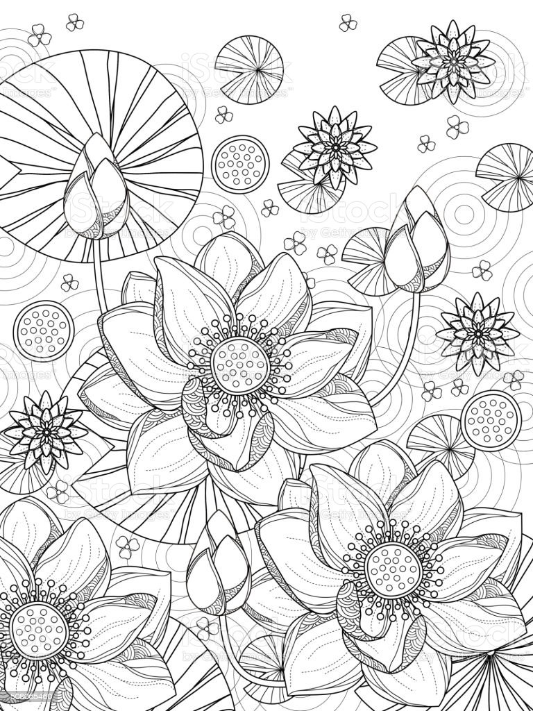 attractive lotus coloring page vector art illustration