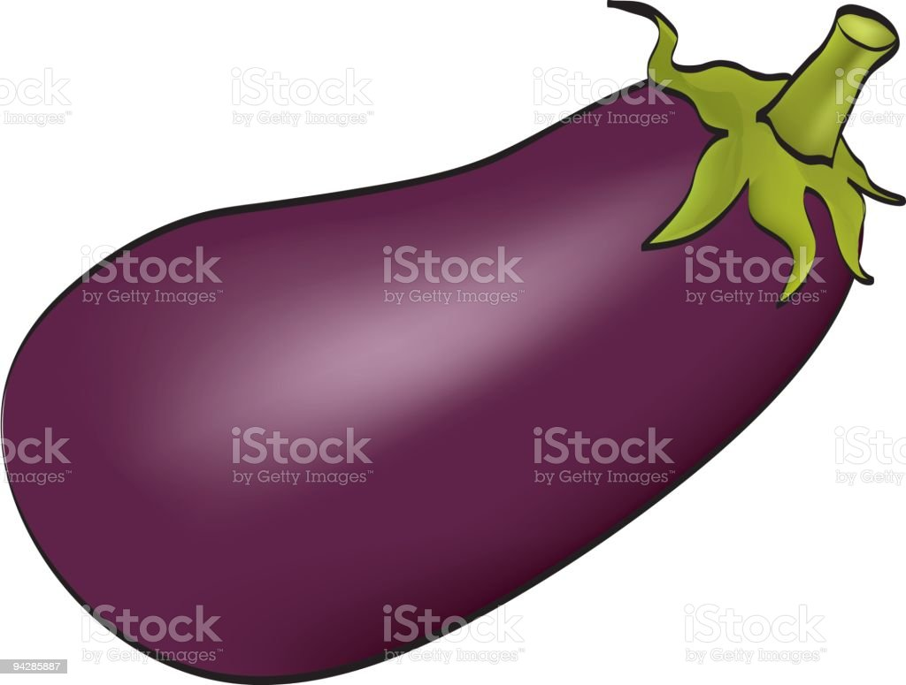 Aubergine plant on white vector art illustration