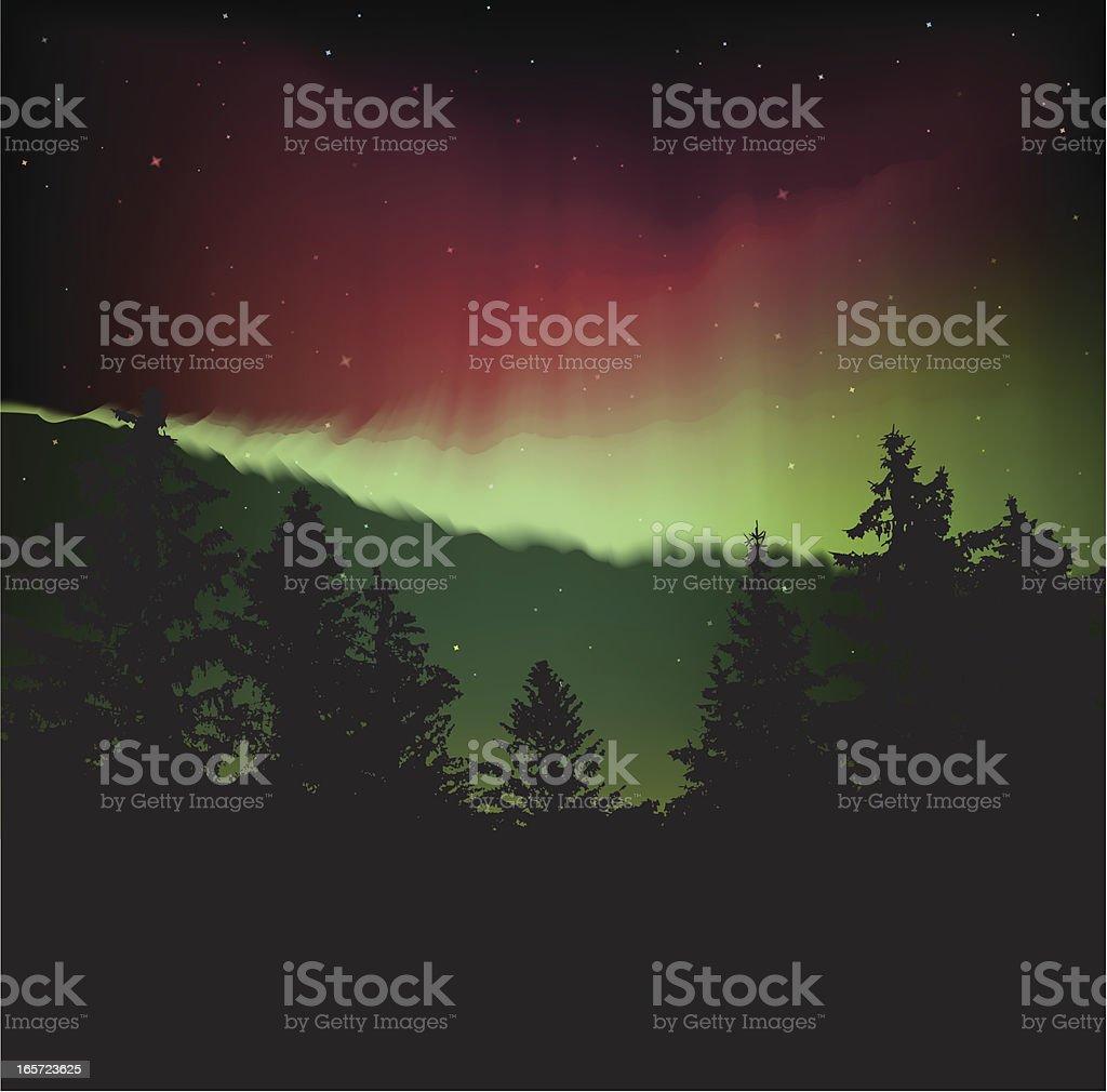 Aurora vector art illustration