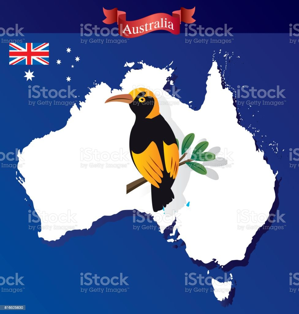 Australia and Regent Bowerbird vector art illustration