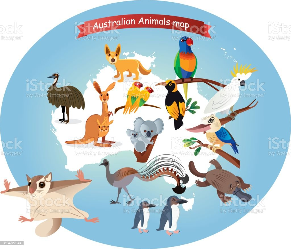 Australian  Animals Map vector art illustration