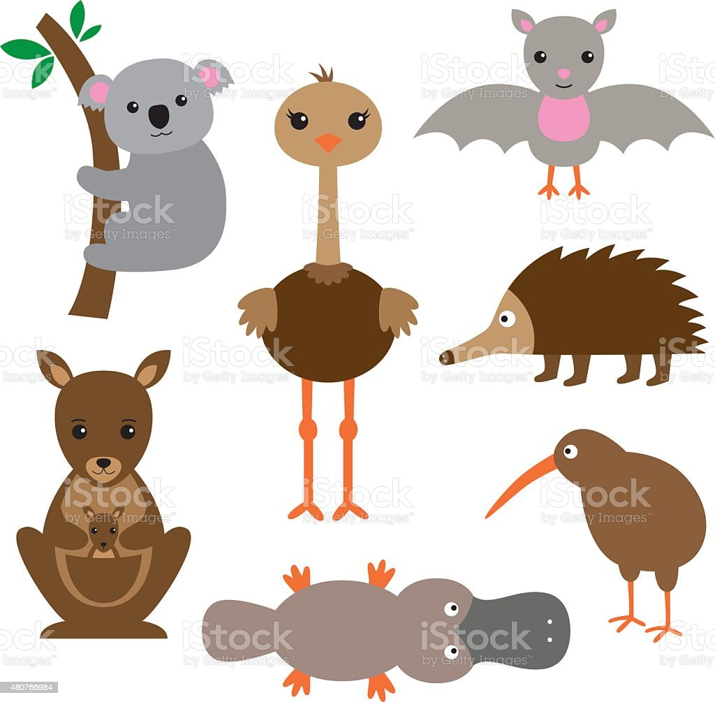 Australian animals vector set vector art illustration