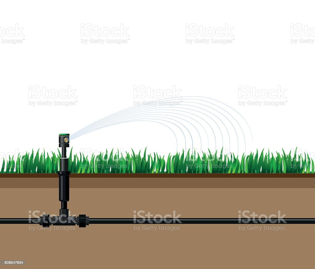 Automatic sprinklers watering vector art illustration