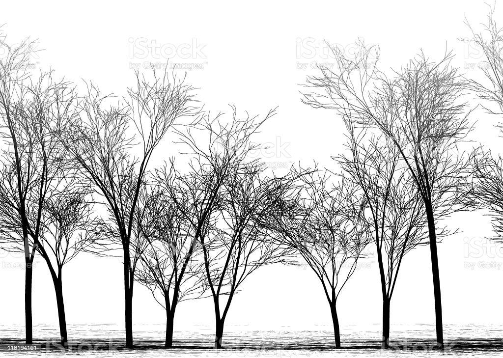 Autumn alley vector art illustration
