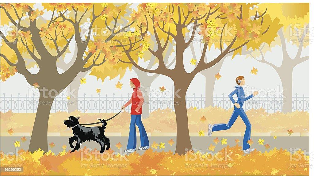 autumn avenue vector art illustration