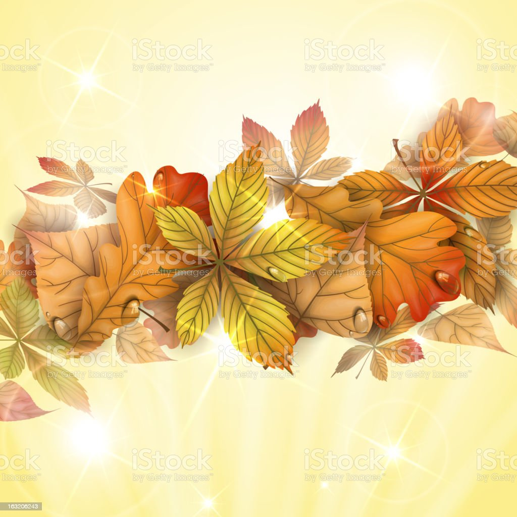 Autumn background with leaves. royalty-free stock vector art