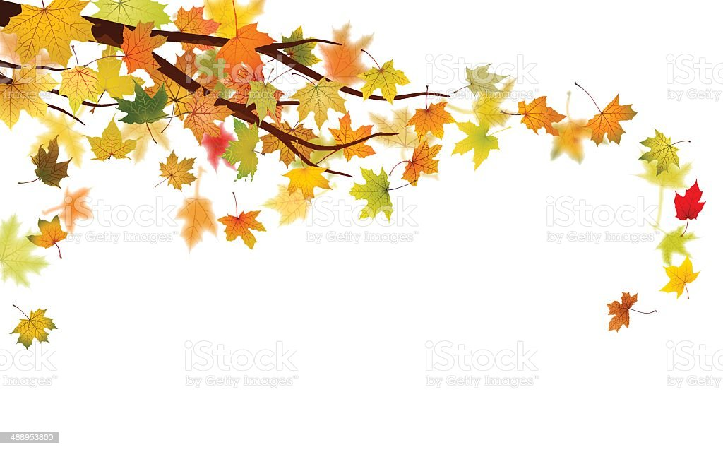 Autumn branch vector art illustration