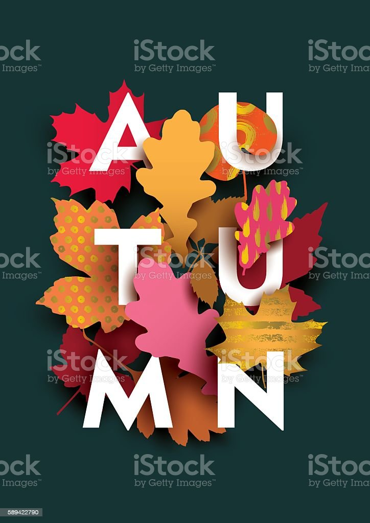 Autumn card with different plant elements on dark background. vector art illustration