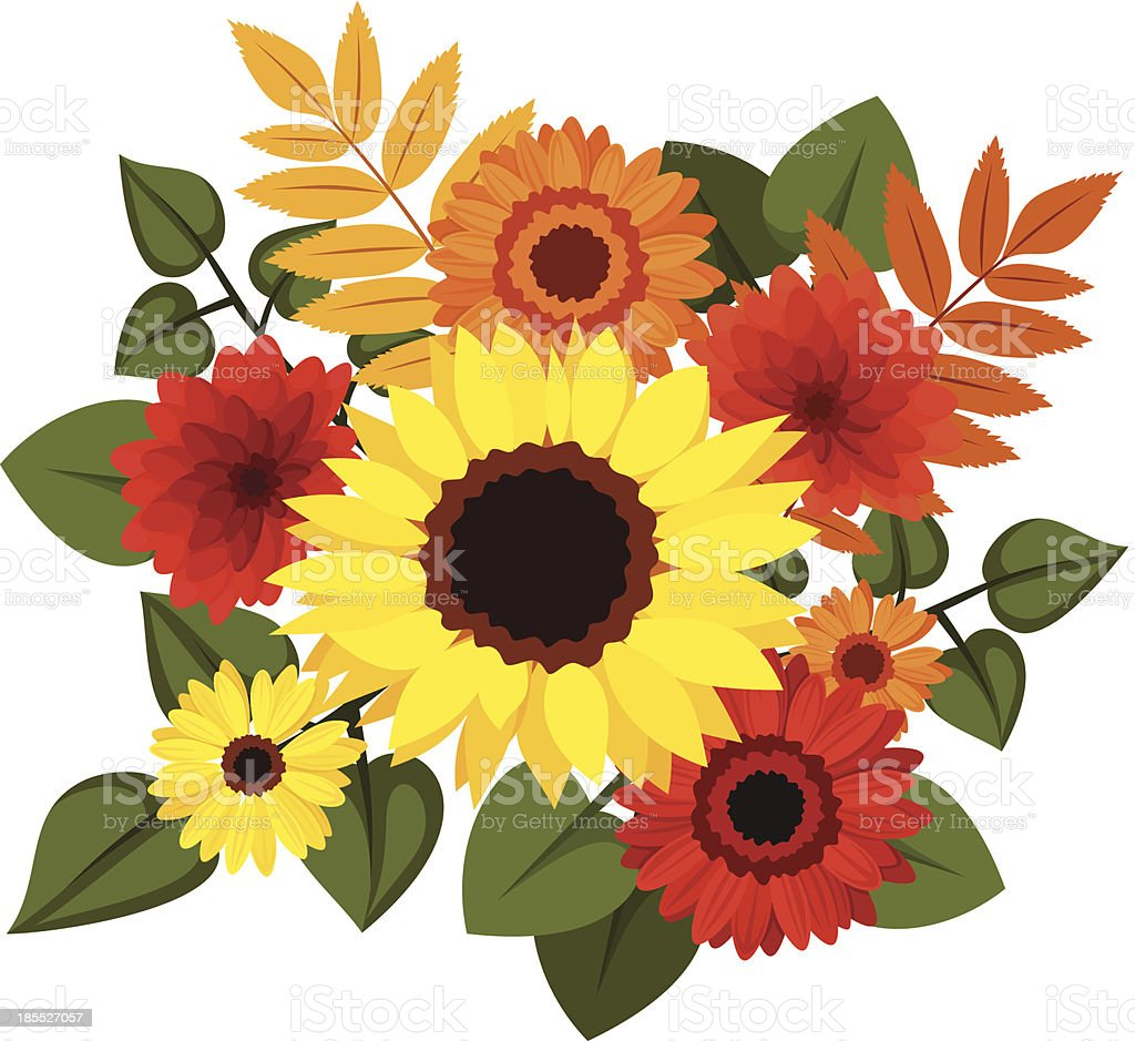 Autumn colorful flowers. Vector illustration. royalty-free stock vector art