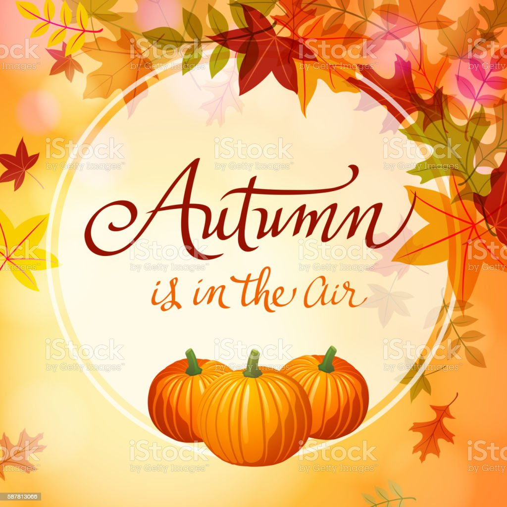 Autumn Comes with Pumpkins vector art illustration