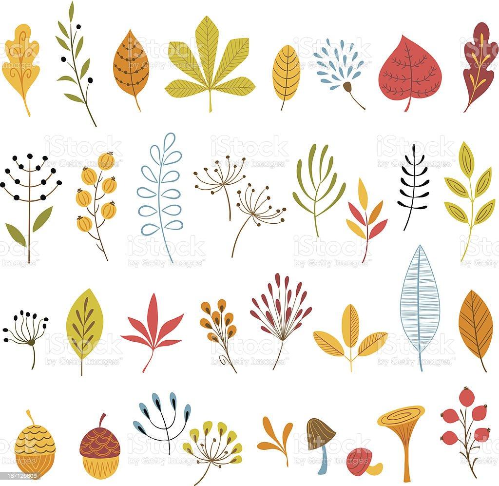 Autumn floral design elements vector art illustration