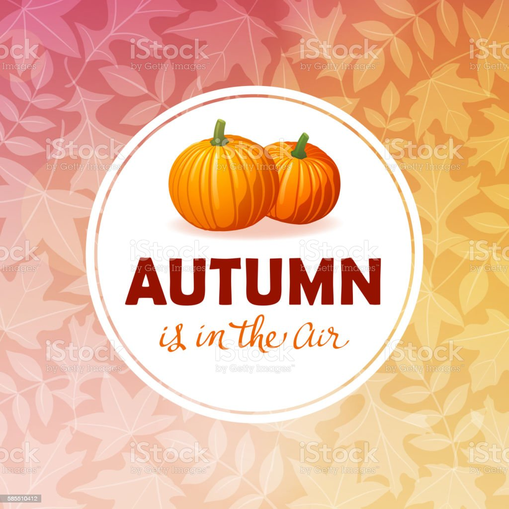 Autumn Frame with Pumpkins vector art illustration