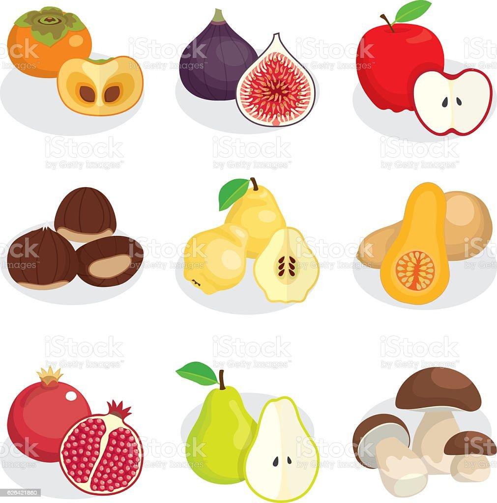 autumn fruits nuts and mushroom vector art illustration