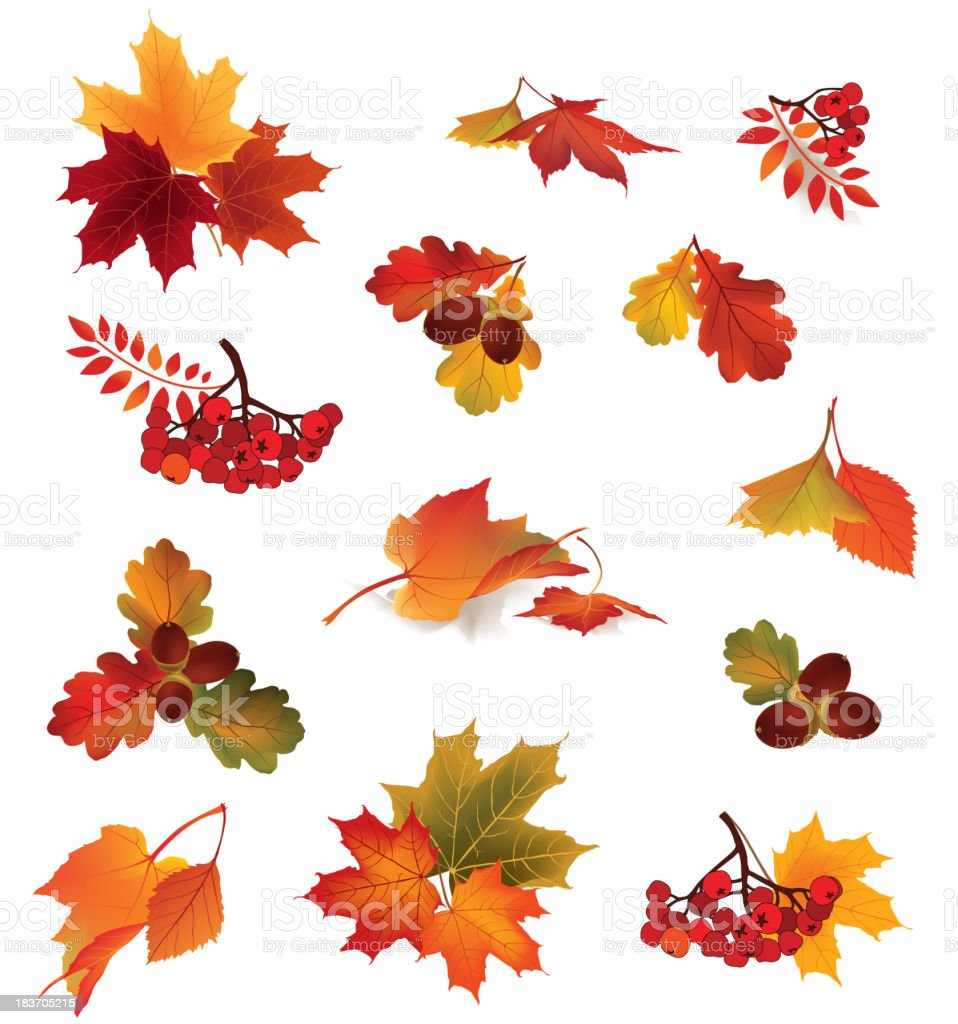 Autumn icon set. Fall symbols vector collection. vector art illustration