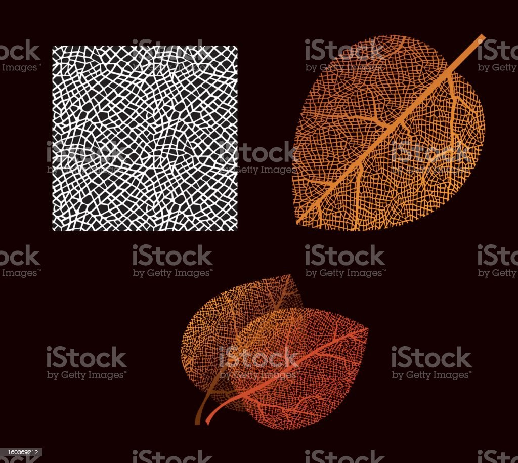 autumn leaf royalty-free stock vector art