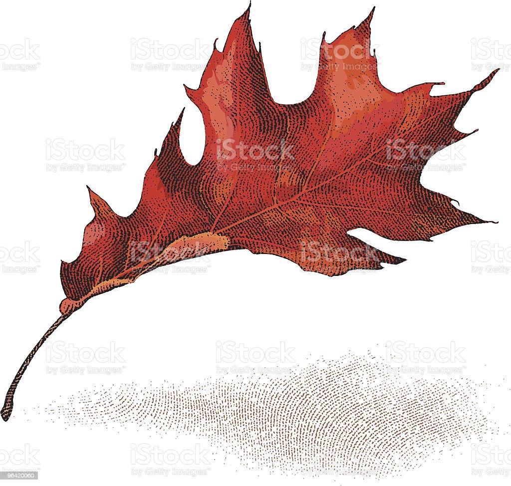 Autumn Leaf royalty-free stock vector art