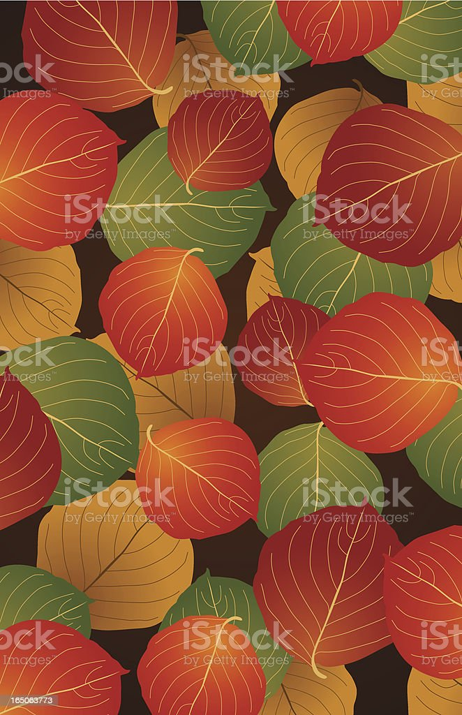 Autumn Leave illustration royalty-free stock vector art