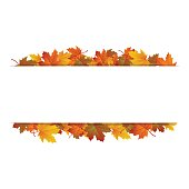 Autumn leaves around blank rectangle. Vector banner