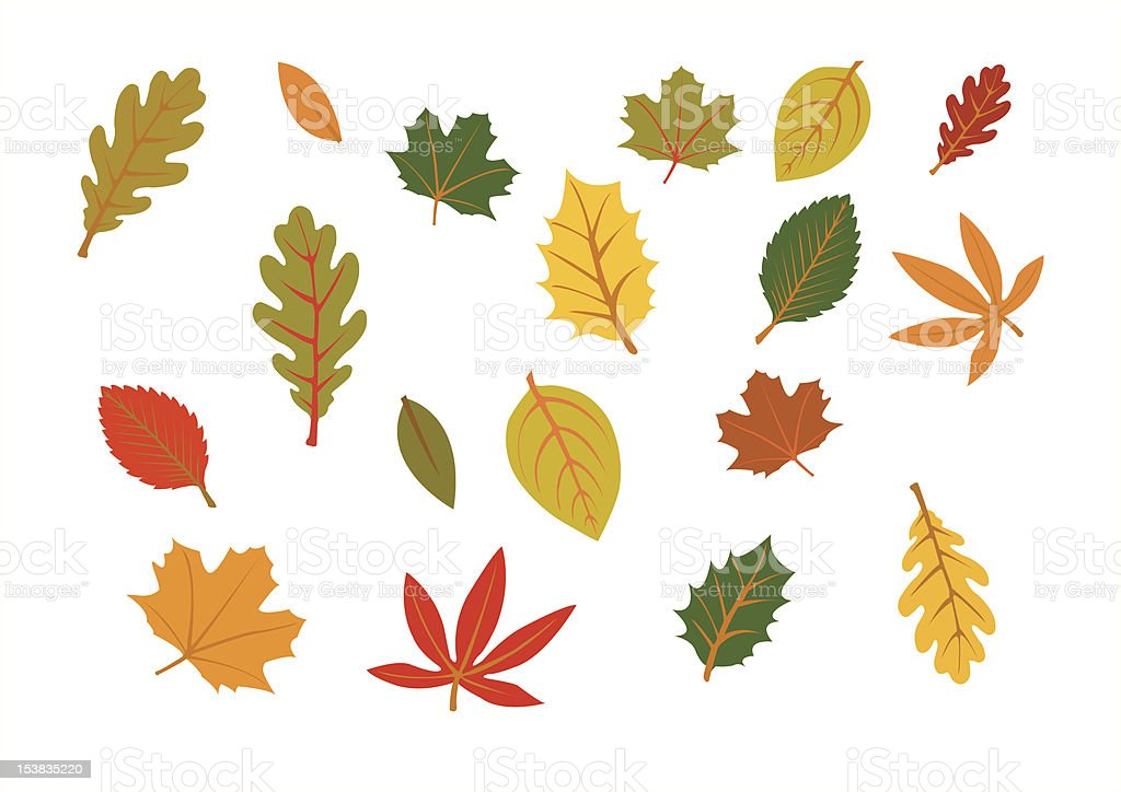 autumn leaves illustration royalty-free stock vector art