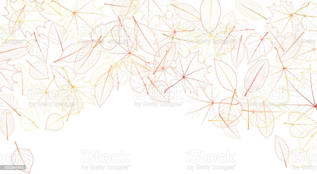 Autumn leaves on white background. plus EPS10 vector art illustration