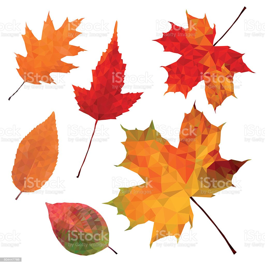 Autumn leaves on white background vector art illustration