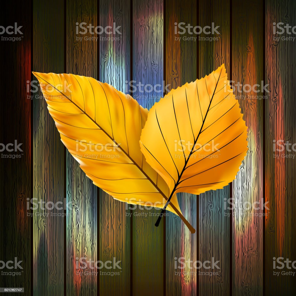 Autumn Leaves over wooden background. plus EPS10 royalty-free stock vector art