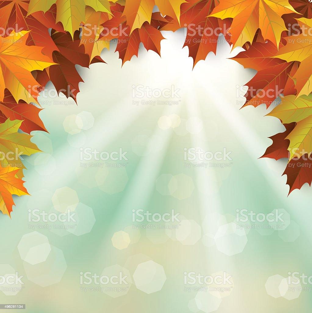 autumn , Maple leaves Background vector art illustration