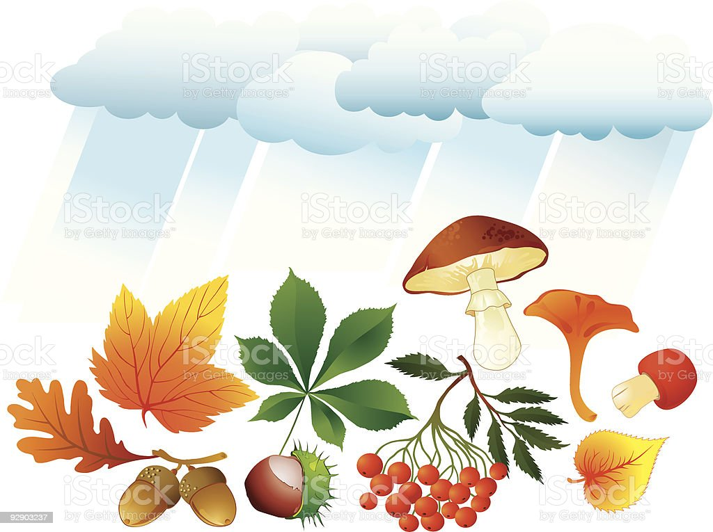 Autumn natural objects royalty-free stock vector art