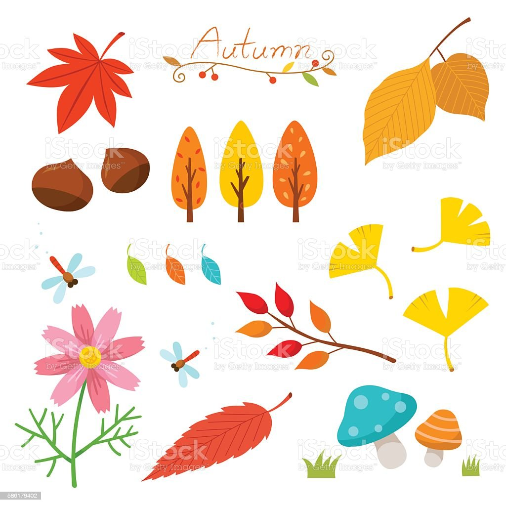 Autumn nature elements vector art illustration