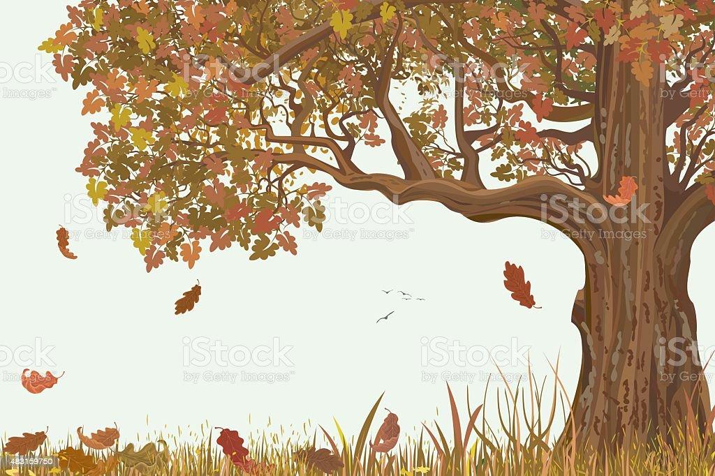 Autumn oak vector art illustration