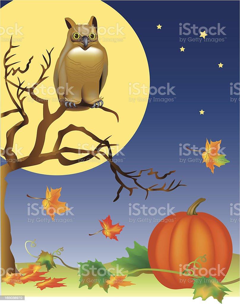 Autumn owl royalty-free stock vector art