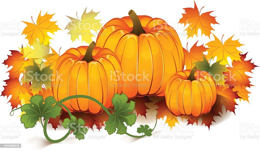 Autumn pumpkins vector art illustration