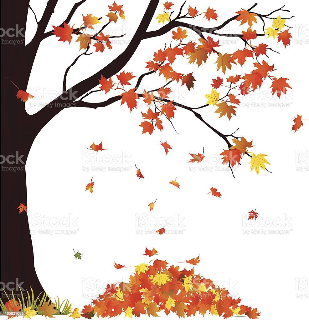 Autumn Tree And Pile of Leaves vector art illustration
