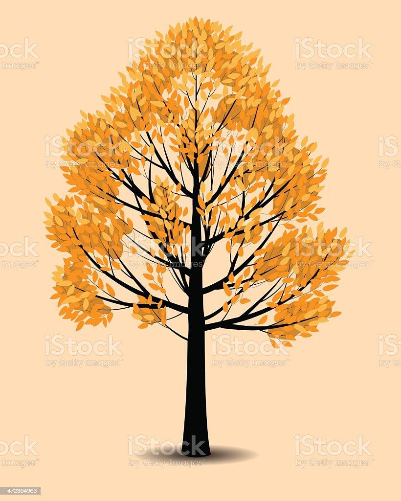 autumn tree royalty-free stock vector art
