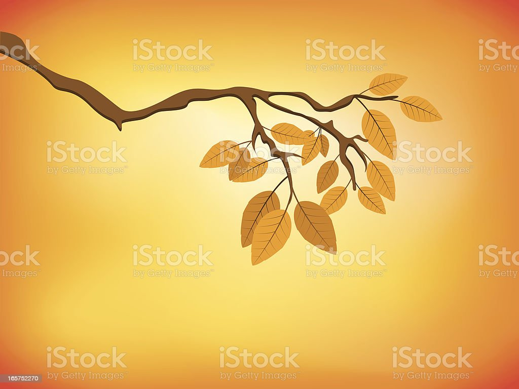 Autumn vector art illustration