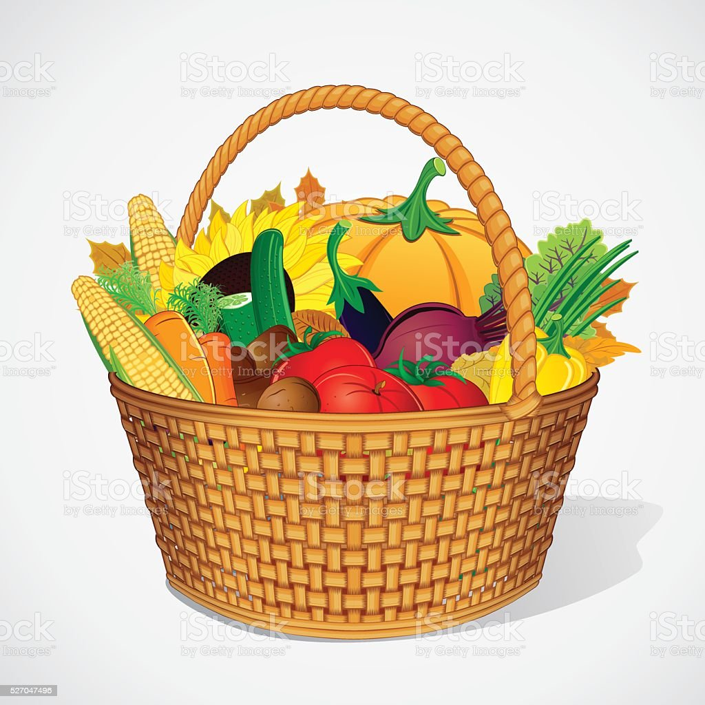 Autumn Vegetable and Fruits Harvesting vector art illustration