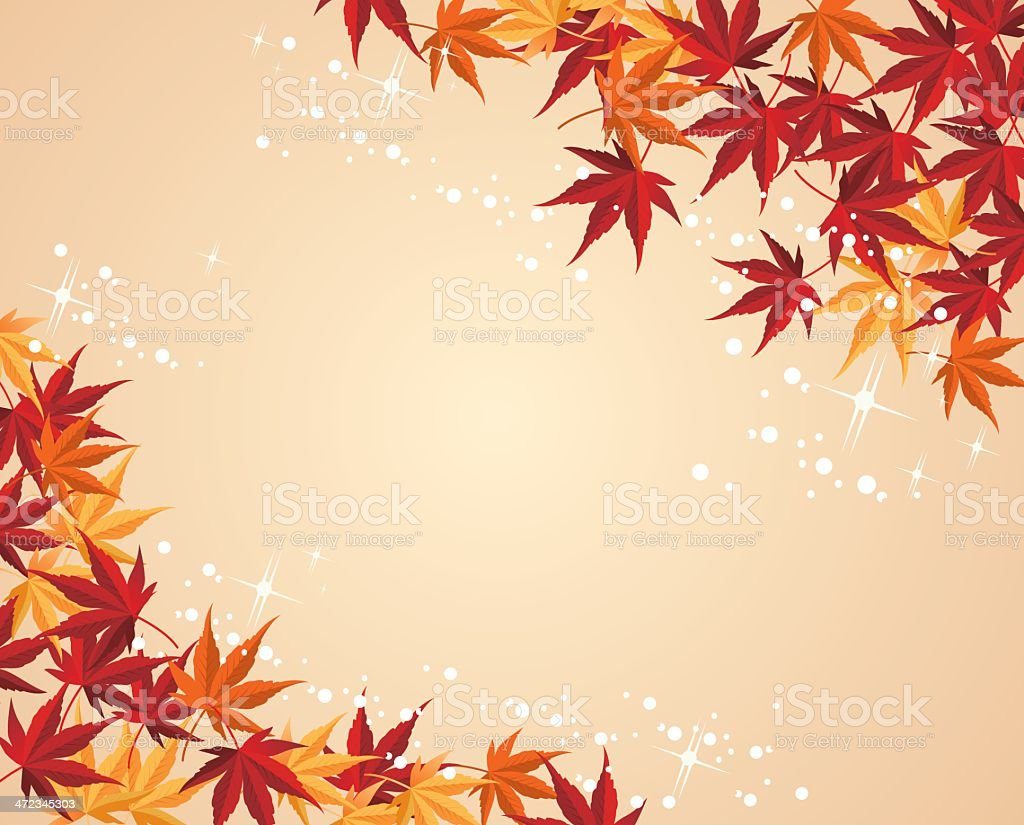 Autumnal leaf maple background Vector vector art illustration