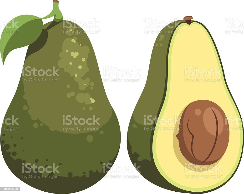 Avocado Cartoon vector art illustration