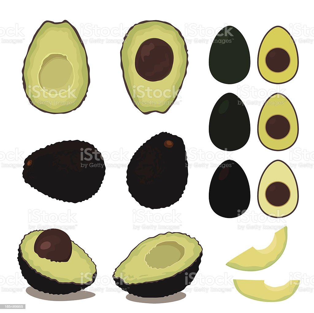 avocado fruit set royalty-free stock vector art