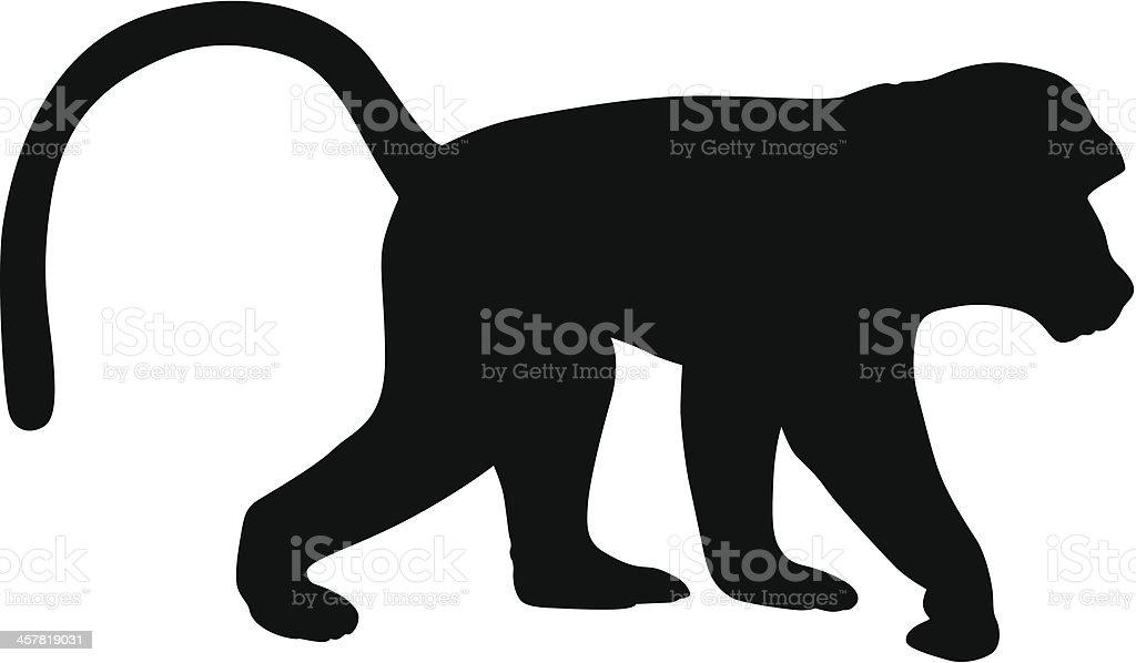 Baboon vector art illustration