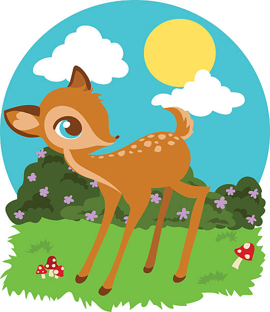 Fawn Clip Art, Vector Images & Illustrations - iStock