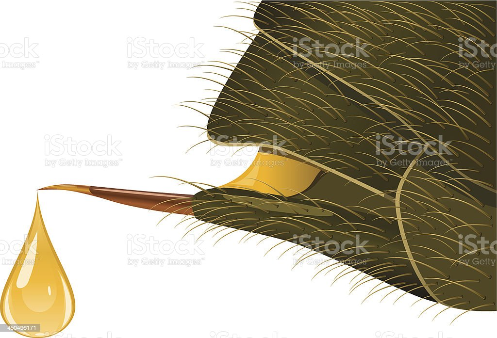 Back of bee in close up while stinging vector art illustration