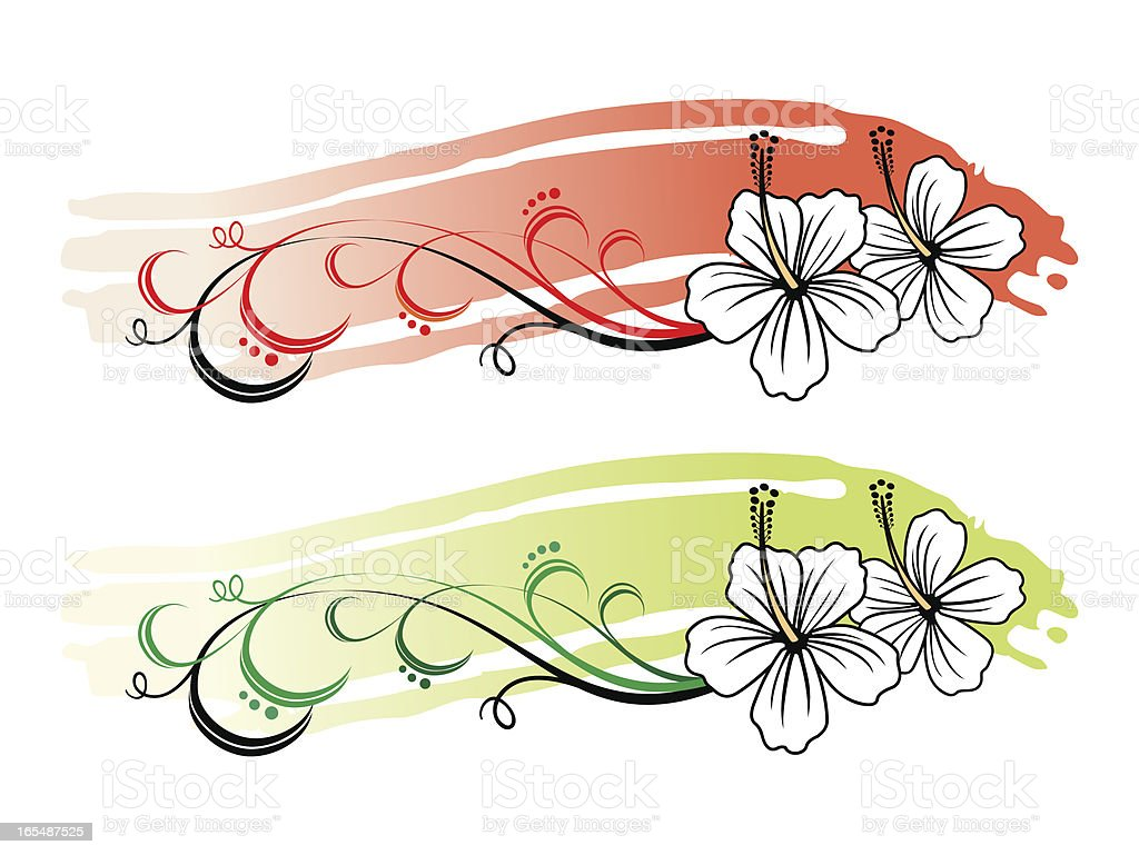 background hibiscus ll royalty-free stock vector art